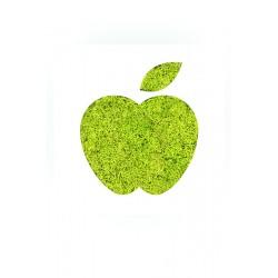 Mini Picto pomme